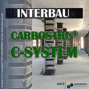 software carbostru C-system